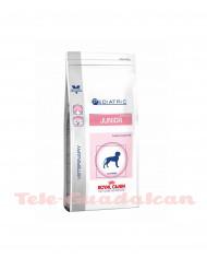 Royal Canin Pediatric Junior 4Kg