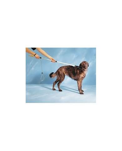 Lazo Para inmovilizacion de perros 150cm