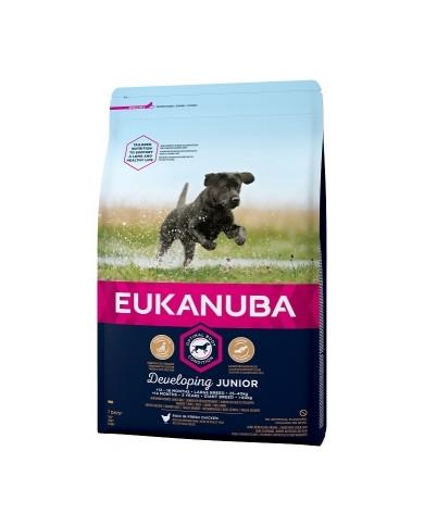 Eukanuba Junior Razas Grandes 15kg