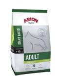 Arion Original Adult Giant pollo 12Kg