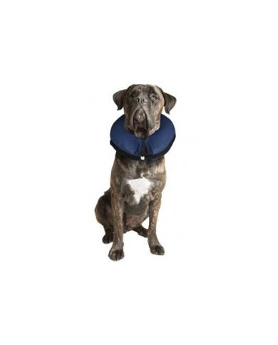 Collar Inflable para perros y gatos