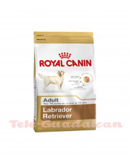 Royal Canin Labrador Adulto 3Kg
