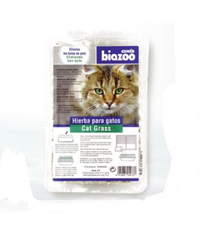 Hierba De Gatos Axis Biozoo
